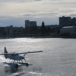 Float plane taxiing on Victoria's inner harbor.