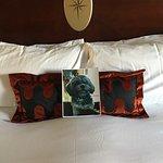Kimpton Marlowe Hotel Foto