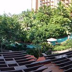 I tried to take a panoramic photo to show the lazy river winding through the flowers and trees.