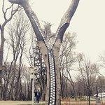 Emirgan Park Foto