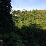 Ayung Resort Ubud Foto