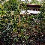 Photo of Rose Gardens Homestay