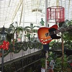 Conservatory with plants and Christmas hangings