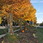 Fall colors are beautiful in Door County.