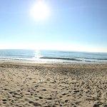 Фотография Usodimare & Mino on The Beach