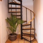 Spiral Stairs in The Casita take you to the bedroom, with its king bed, surrounded by trees.
