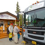 Day trips into Denali National Park on Denali Backcountry Adventure