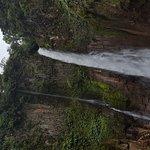 Catarata Del Toro Adventures Foto