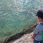 Kuhio Beach Foto