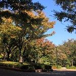 Photo de Grand Hyatt Seoul