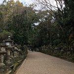 Kasuga Grand Shrine Foto