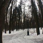 Photo de Tsarytsino Open-Air History and Architectural Museum