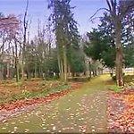 Vue d'automne sur le magnifique parc ... où il fait bon se promener !