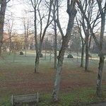 Côté du parc où les arbres ont déjà perdu leur parure !