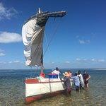 Pansy Island Tour