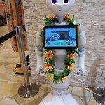 Photo de Hotel Hawaiians