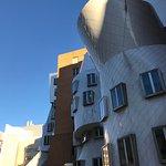 フランクゲーリーの建築