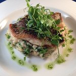 Barramundi, Spinach & Pea risotto