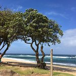 Ho'okipa Beach Park is great location to watch wind surfers.
