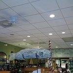 The Tin Fish Foto