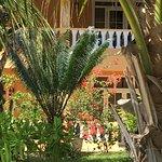 Photo of Villa Dorado