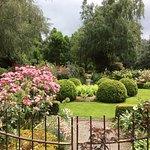 A wonderful rose garden