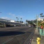 Saga can be just glimpsed on the right; the stands for the Rose Parade are right across the stre