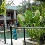 cortile interno con piante e piscina