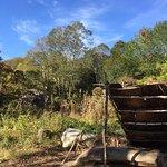 Plimoth Plantation Foto