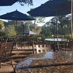 Early morning on the patio outside of Packards restaurant, Innisbrook Golf Resort, Palm Harbor,