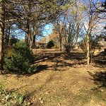 Oaklawn Garden
