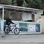 Snorkle gear and Kayak rental desk