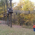 Adventure activities by Go Ape (from April to October)