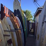 Loads of boards to choose from.