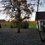 deLorimier Winery & Vineyard Lodging Image