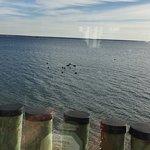 Photo de Fanizzi's by the Sea