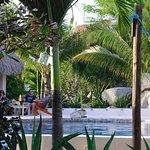 Photo de Gecko Rock Resort