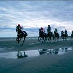 the famous Laytown Races