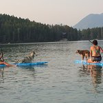 One of the many reasons why the dogs love Lake Five!
