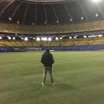 Foto de Olympic Stadium