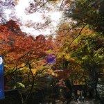 Korankei Foto