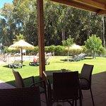 Cafetería, terraza y piscina.