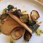 snails and marrow