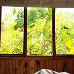 Knysna Tonquani Lodge & Spa Foto