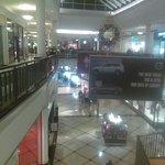 IMAG0516_large.jpg