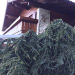 Hotel St. Anton Foto