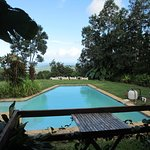 El Hotelito at the Rainforest Experience Farm รูปภาพ