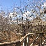 Escarpment Luxury Lodge Foto