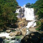 תמונה מRathna Ella waterfall