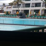 view from poolbar
